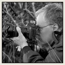 Doug Sahlin - Wedding and Event Photographer
